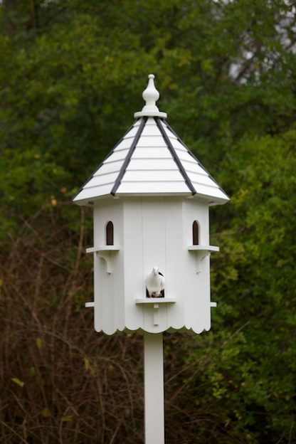 Buckingham Dovecote with Dove